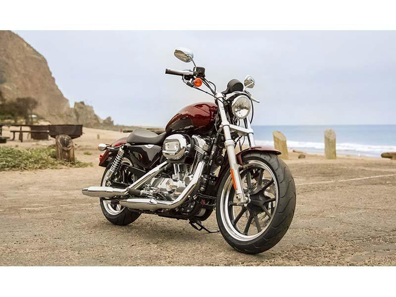 2014 Harley-Davidson Sportster® SuperLow® in Honesdale, Pennsylvania - Photo 9