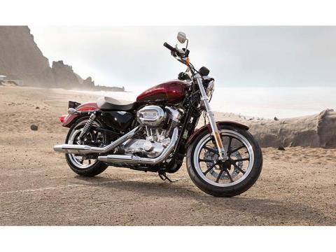 2014 Harley-Davidson Sportster® SuperLow® in Honesdale, Pennsylvania - Photo 4