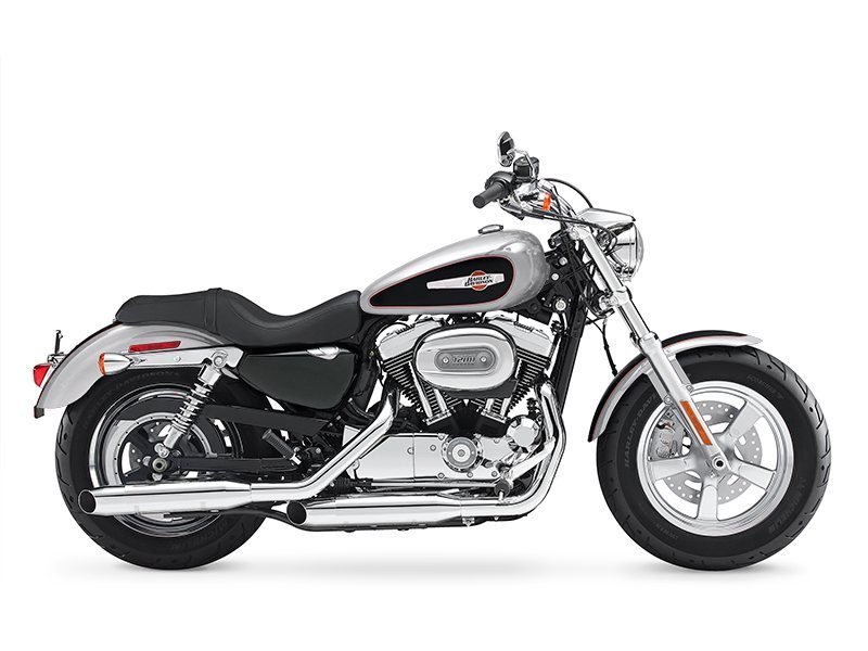 2015 Harley-Davidson 1200 Custom in Riverhead, New York