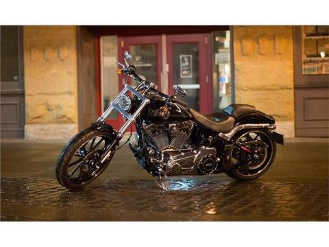 2015 Harley-Davidson Breakout® in Bristol, Virginia - Photo 12