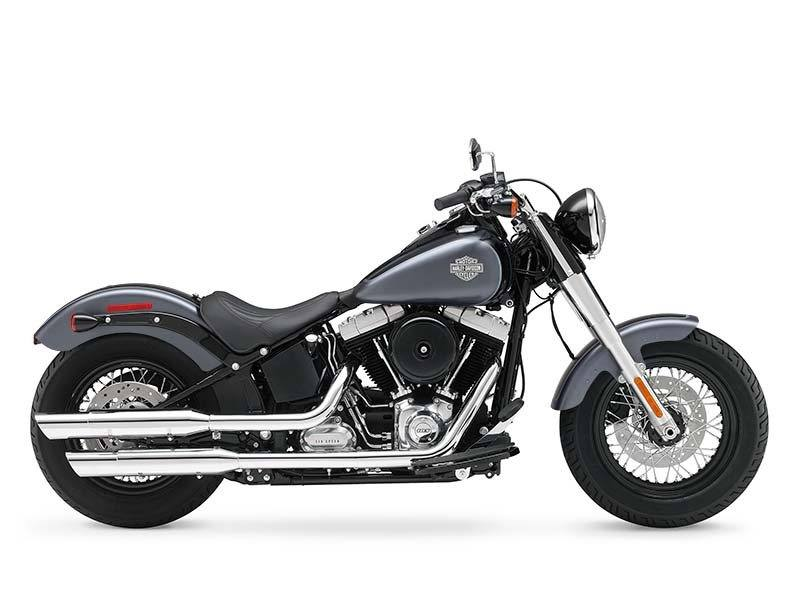 2015 Harley-Davidson Softail Slim® in Athens, Ohio - Photo 12