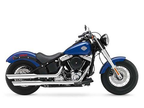 2015 Harley-Davidson Softail Slim® in Mankato, Minnesota
