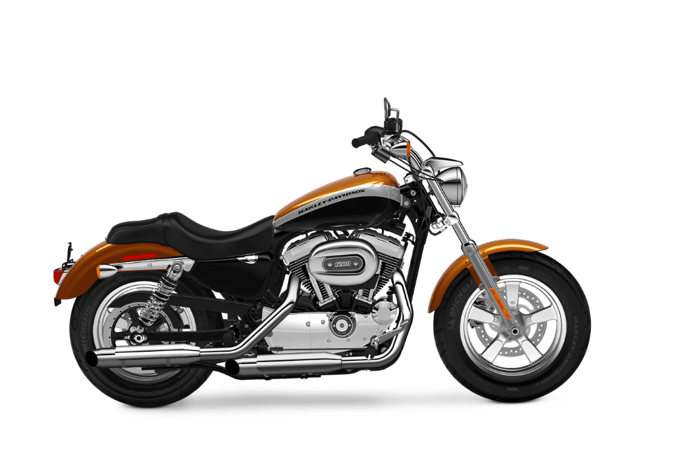 2016 Harley-Davidson 1200 Custom in Erie, Pennsylvania