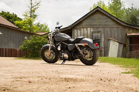2016 Harley-Davidson 1200 Custom in Waterford, Michigan