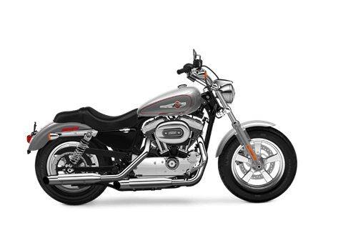 2016 Harley-Davidson 1200 Custom in Rothschild, Wisconsin