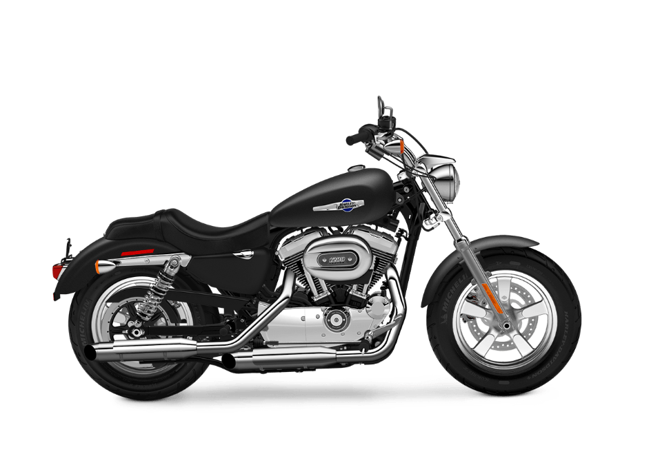 2016 Harley-Davidson 1200 Custom in Green River, Wyoming