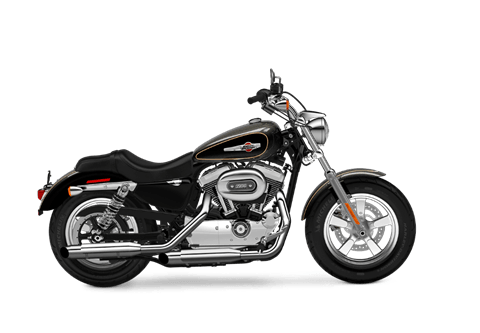 2016 Harley-Davidson 1200 Custom in South Charleston, West Virginia