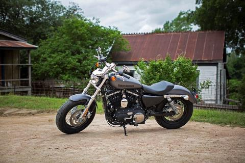 2016 Harley-Davidson 1200 Custom in Dimondale, Michigan