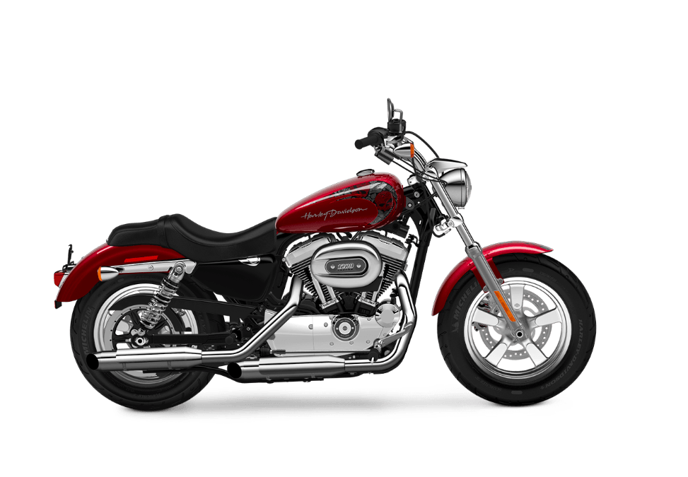 2016 Harley-Davidson 1200 Custom in Broadalbin, New York