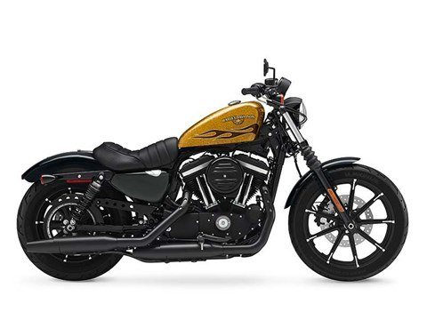 2016 Harley-Davidson Iron 883™ in Rothschild, Wisconsin