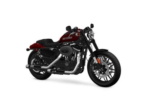 2016 Harley-Davidson Roadster™ in Asheville, North Carolina