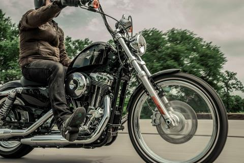 2016 Harley-Davidson Seventy-Two® in Erie, Pennsylvania