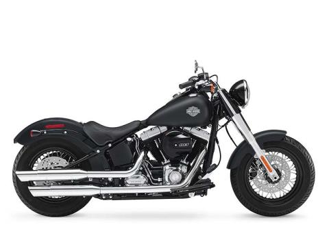 2016 Harley-Davidson Softail Slim® in Sunbury, Ohio