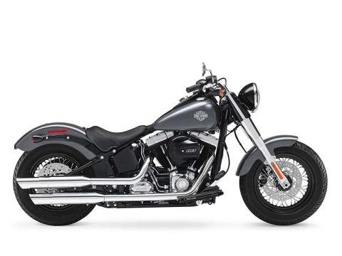 2016 Harley-Davidson Softail Slim® in North Canton, Ohio - Photo 1
