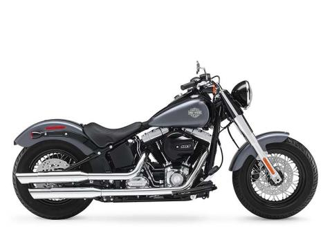2016 Harley-Davidson Softail Slim® in Mentor, Ohio