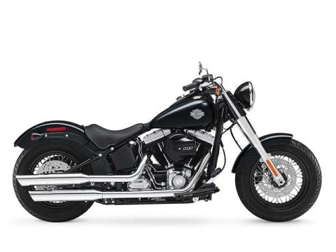 2016 Harley-Davidson Softail Slim® in Rothschild, Wisconsin