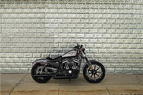 2017 Harley-Davidson Iron 883™ in Colorado Springs, Colorado - Photo 8