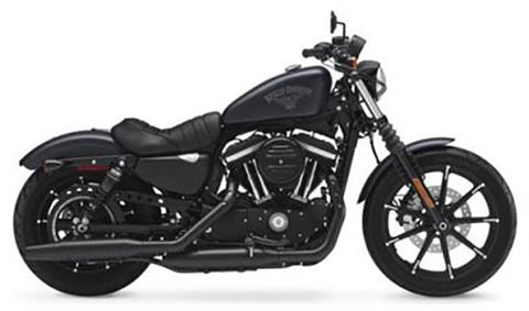 2017 Harley-Davidson Iron 883™ in San Francisco, California - Photo 13