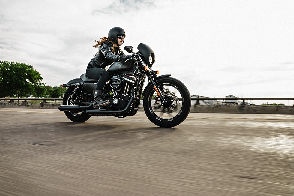 2017 Harley-Davidson Iron 883™ in Waterford, Michigan