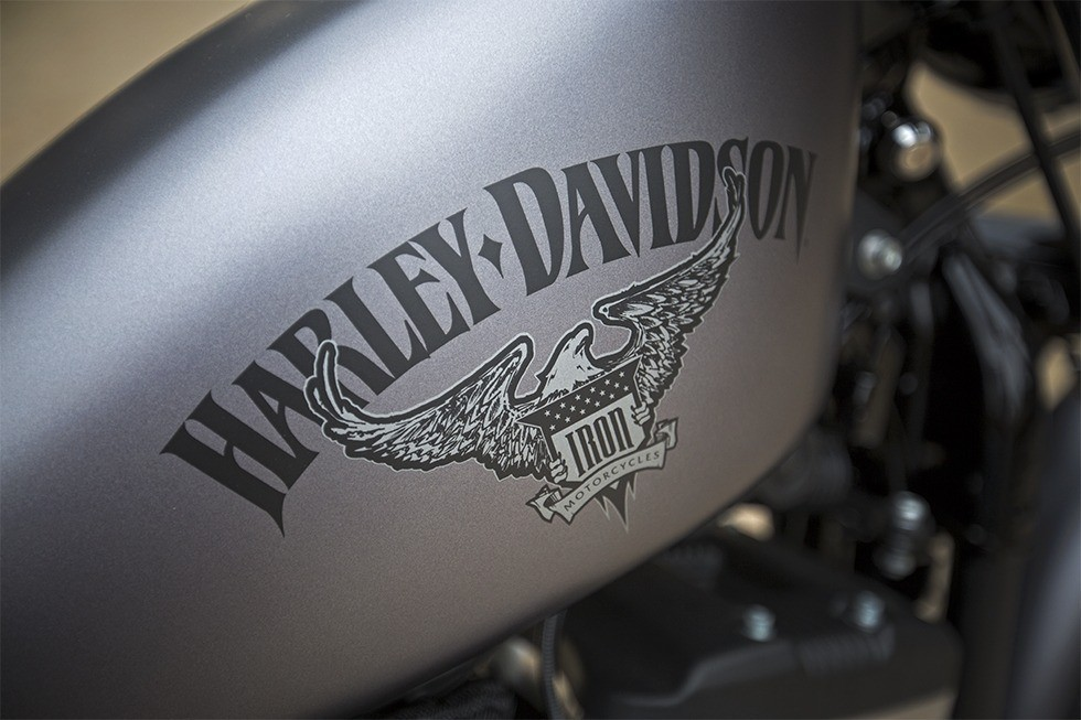 2017 Harley-Davidson Iron 883™ in Hermon, Maine
