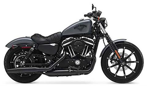 2017 Harley-Davidson Iron 883™ in Monroe, Michigan - Photo 3