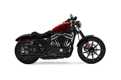 2017 Harley-Davidson Iron 883™ in Broadalbin, New York