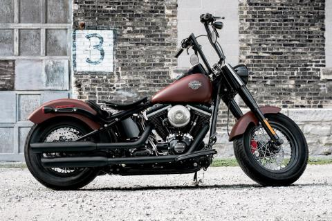 2017 Harley-Davidson Softail Slim® in Hico, West Virginia