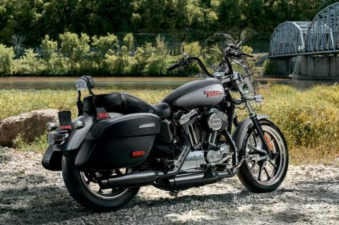 2017 Harley-Davidson Superlow 1200T in Pittsfield, Massachusetts