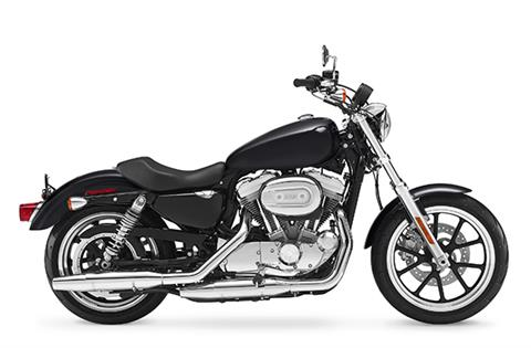 2017 Harley-Davidson Police Sportster® XL883L in Pittsfield, Massachusetts