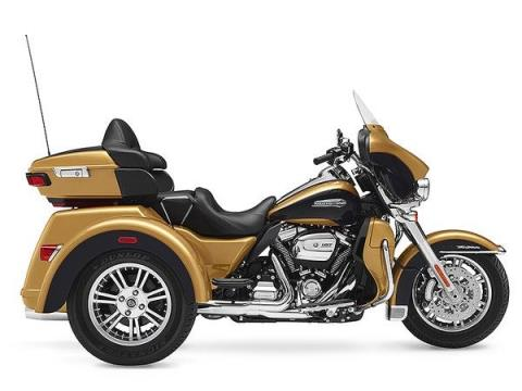 2017 Harley-Davidson Tri Glide® Ultra in Hico, West Virginia