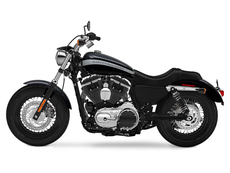 2018 Harley-Davidson 1200 Custom in Columbia, Tennessee