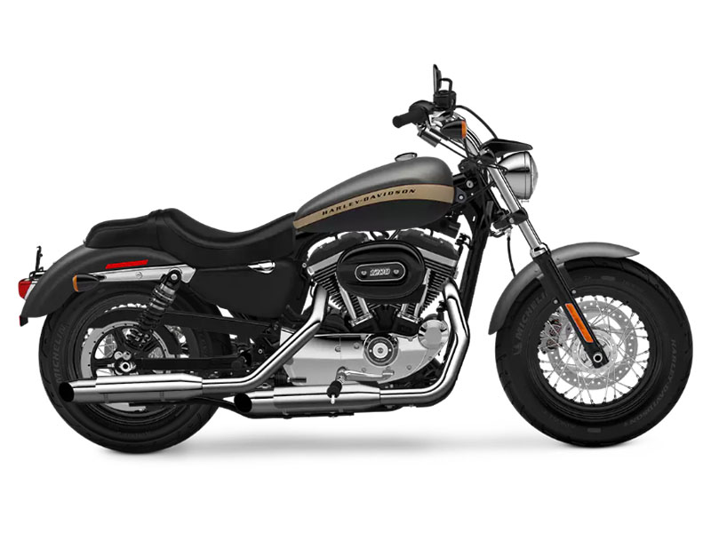 2018 Harley-Davidson 1200 Custom in Branford, Connecticut