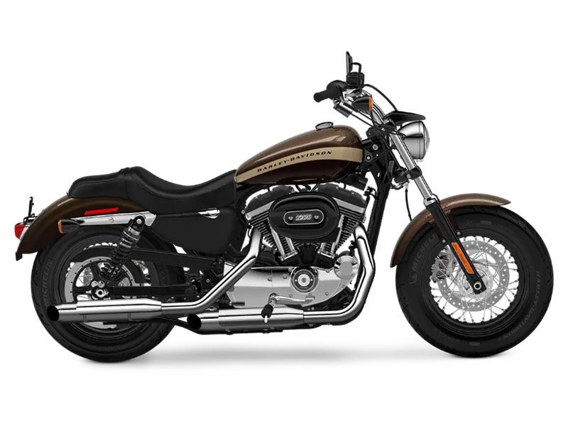 2018 Harley-Davidson 1200 Custom in Manassas, Virginia