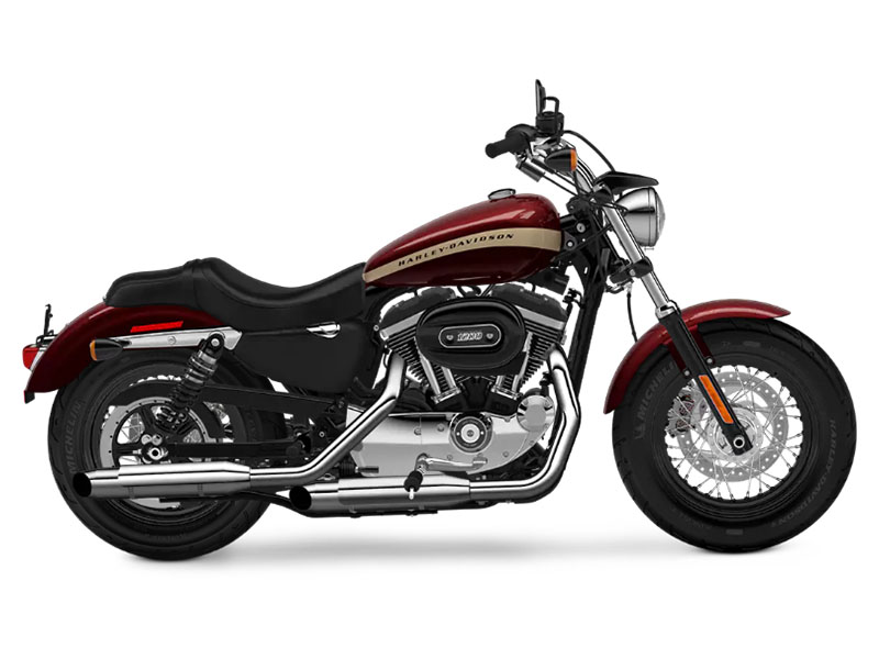 2018 Harley-Davidson 1200 Custom in Broadalbin, New York