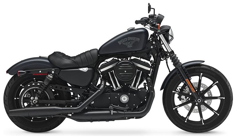 2018 Harley-Davidson Iron 883™ in Chippewa Falls, Wisconsin - Photo 1