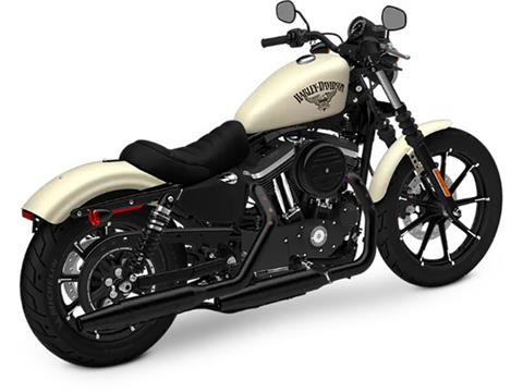 2018 Harley-Davidson Iron 883™ in Pittsfield, Massachusetts