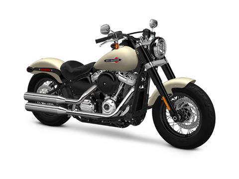 2018 Harley-Davidson Softail Slim® 107 in Mentor, Ohio