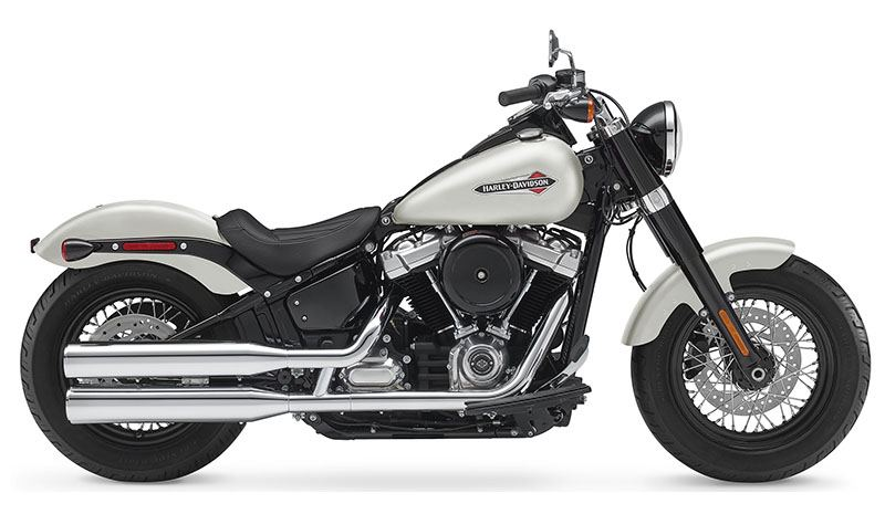 2018 Harley-Davidson Softail Slim® 107 in Fredericksburg, Virginia - Photo 1