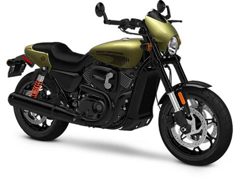 2018 Harley-Davidson Street Rod™ in Pittsfield, Massachusetts