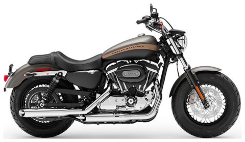 2019 Harley-Davidson 1200 Custom in Leominster, Massachusetts