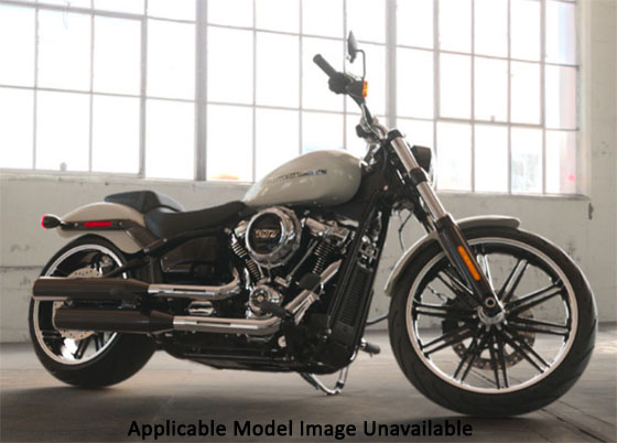 2019 Harley-Davidson Breakout® 114 in Sunbury, Ohio