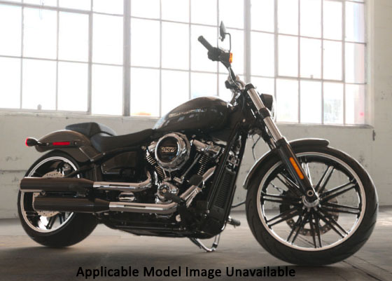 2019 Harley-Davidson Breakout® 114 in Waterford, Michigan