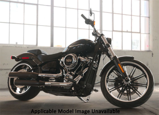 2019 Harley-Davidson Breakout® 114 in Junction City, Kansas