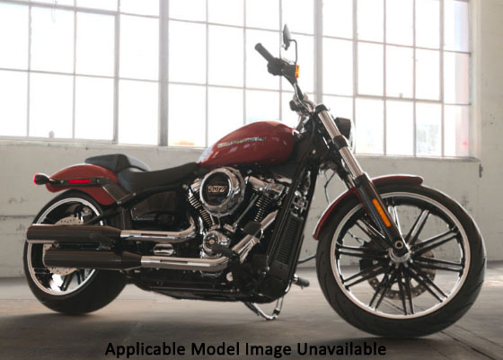 2019 Harley-Davidson Breakout® 114 in Galeton, Pennsylvania