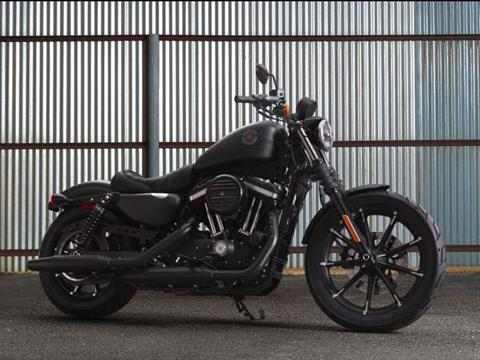 2019 Harley-Davidson Iron 883™ in Athens, Ohio
