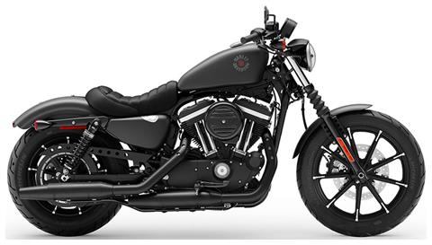 2019 Harley-Davidson Iron 883™ in Faribault, Minnesota - Photo 1