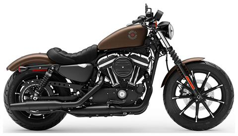 2019 Harley-Davidson Iron 883™ in Mauston, Wisconsin - Photo 1
