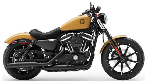 2019 Harley-Davidson Iron 883™ in Chippewa Falls, Wisconsin - Photo 1