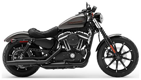 2019 Harley-Davidson Iron 883™ in New London, Connecticut - Photo 1