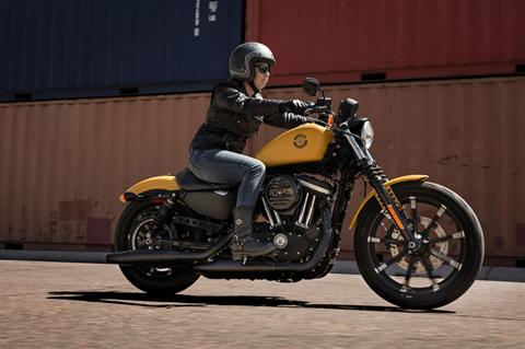 2019 Harley-Davidson Iron 883™ in Augusta, Maine